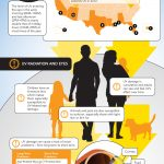 Just How Important Are Sunglasses?