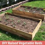 DIY Raised Vegetable Beds for Under $30