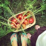 5 Tips To Create A Child Friendly Garden