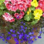 20 DIY Porch and Garden Projects