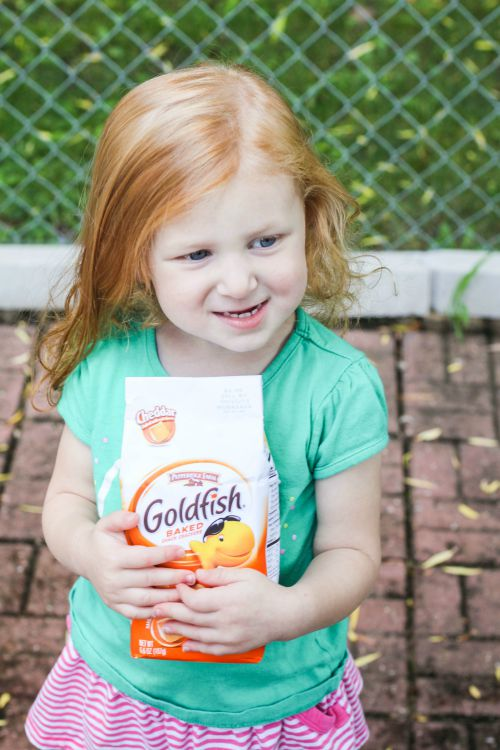 sydney-goldfish2