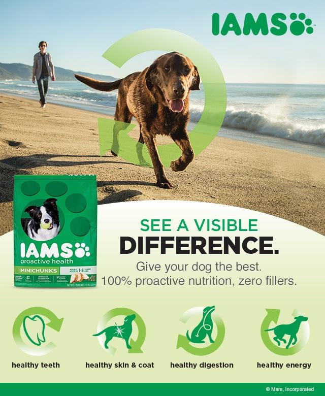 Iams Proactive Health