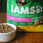 Giving Our #FurryFoodie The Best with IAMS