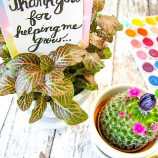 DIY Floral Teacher Appreciation Gift
