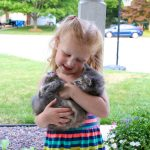 How We Give Our Pets Our Very Best - All The Time
