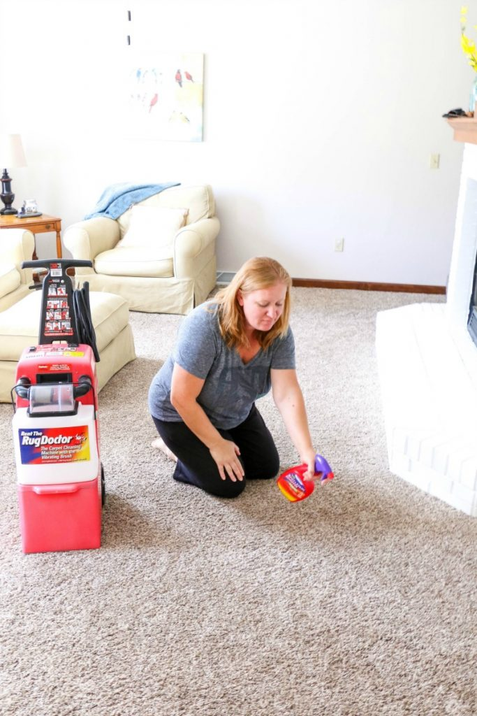 Image Result For Renting Carpet Cleaners