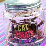 DIY Cat Treat Jar