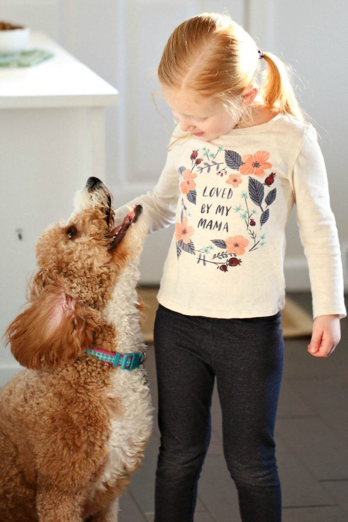 How To Show Your Furry Friend Lots of Love
