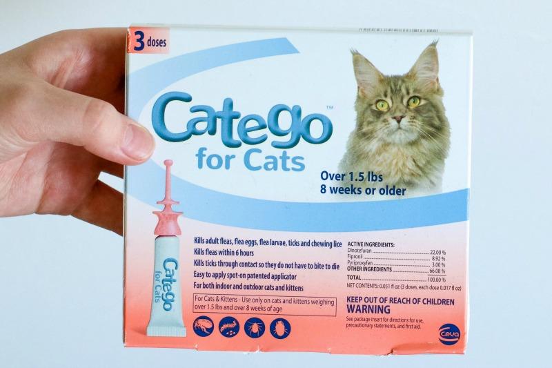funny cat food captions