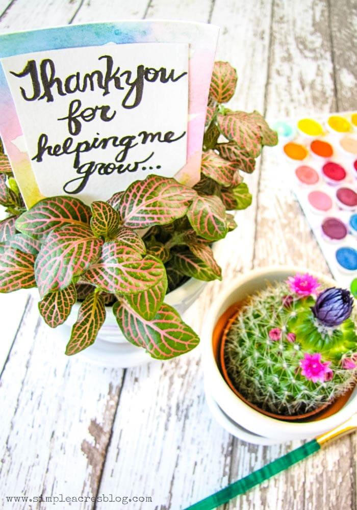 DIY Teacher Floral Gift