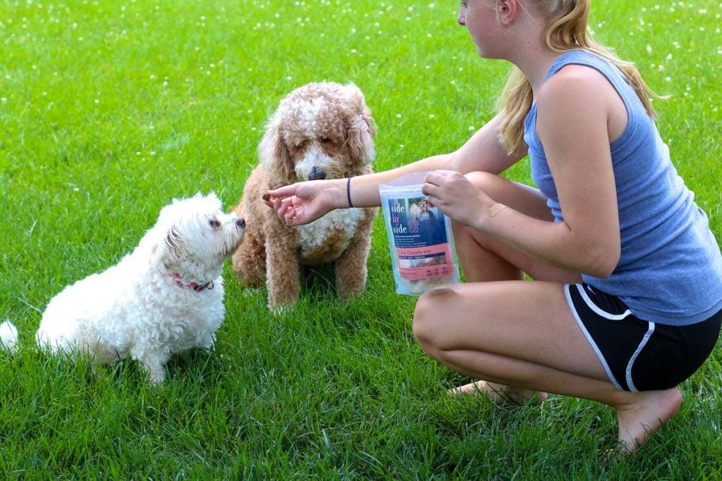 Side by Side Pet Food