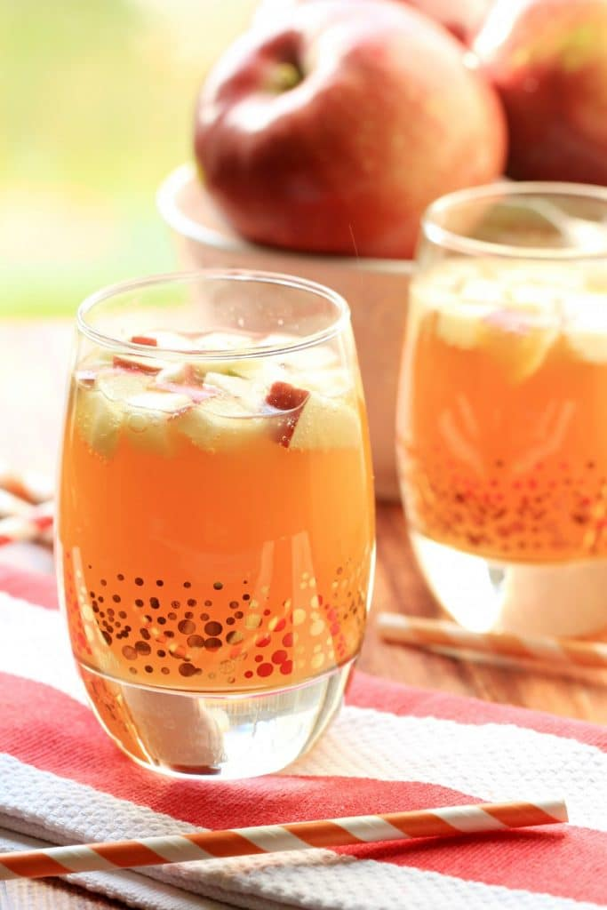 Thanksgiving Guide - Non Alcoholic Apple Pie Punch
