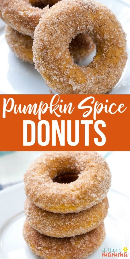 These Baked Pumpkin Spice Donuts, topped with cinnamon-sugar, are the ultimate easy fall dessert! #pumpkin #dessert #donuts #falldessert | allthingsmamma.com