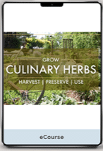 How to Grow Culinary Herbs Online Course Cover