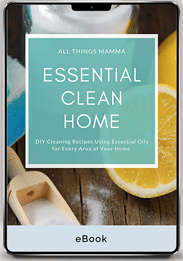 Essential Clean Home by Kasey Schwartz