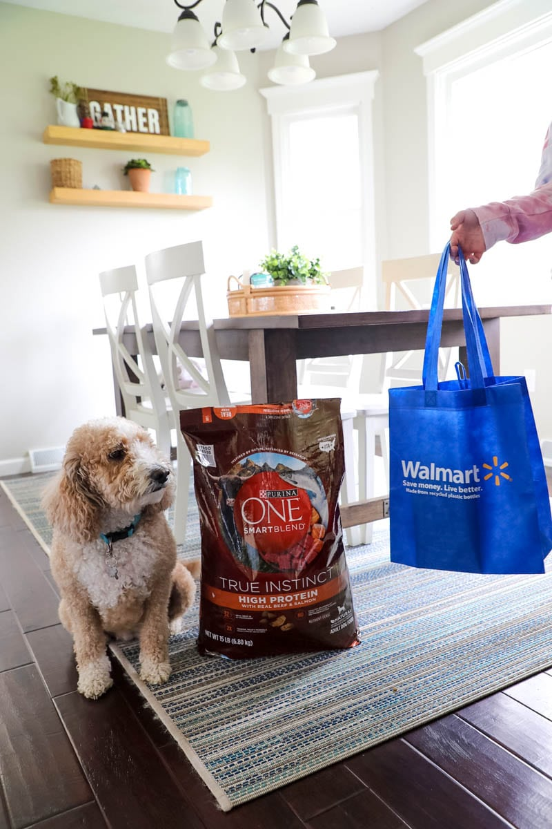 Purina One 28 Challenge With Our Goldendoodle, Bella